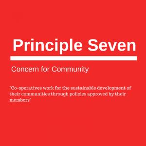 Principle seven